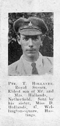 Tom Hollands